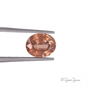 Natural Oval Shape Brown Zircon Gemstones for Sale South Africa